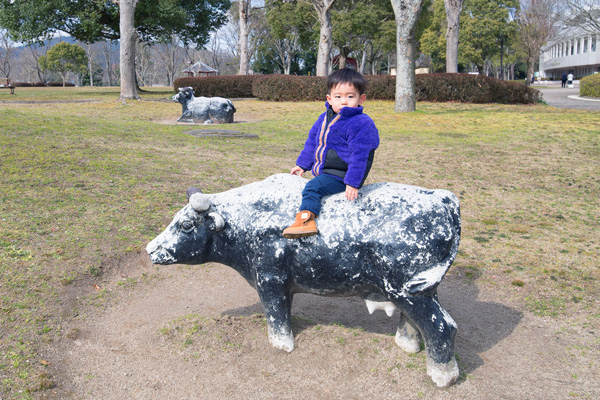 亀岡運動公園その他(子ども向け・ピクニック・ウォーキング)